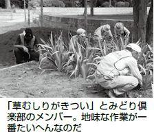 緑と花の環境整備(1)
