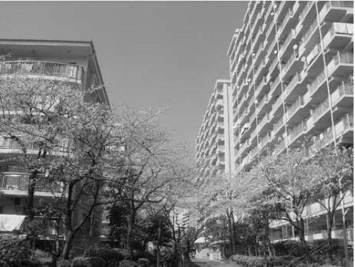 File Data. 7 東京・品川区/品川八潮パークタウン潮路東ハイツ住宅管理組合