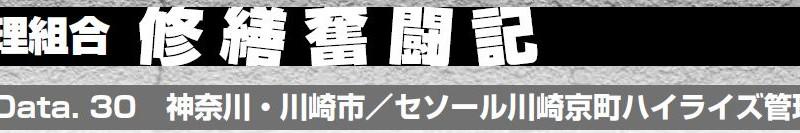 File Data. 30 神奈川・川崎市/セソール川崎京町ハイライズ管理組合