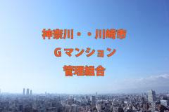 File Data. 114 神奈川・川崎市/ G マンション管理組合